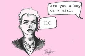 Afbeelding: are you a boy or a girl? No.